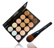 LyDia 15 Colours Cream Concealer/Highlight/Face Contour Camouflage Palette Dull/Redness Skin/Black Circle kit set + LyDia Black Foundation/Concealer Brush F-012