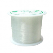 Pandahall 1 Roll 0.3mm Crystal Nylon Thread Fishing Line Wire for Craft Bracelet Beads, 80m