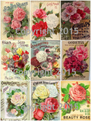 Victorian Vintage Seed Pack Flowers Collage Sheet 101