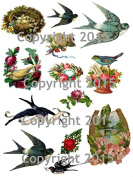 Victorian Birds and Flowers 101 Collage Sheet