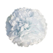 WOM-HOPE® 10 Pack 25cm Tissue Paper Pom Pom Flower Ball Pom-poms - Wedding Party Supplies Decorations Birthday Parties and Baby Showers Party Decorations (White