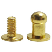 Head Button 5mm Brass Stud Screwback Screw Back Spots for Leather Rivet 100 Sets