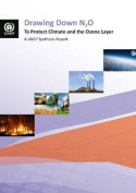 Drawing Down N2O to Protect Climate and the Ozone Layer