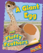A Giant Egg and Fluffy Feathers (Ostrich)