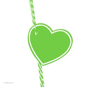 Andaz Press Heart Gift Tags, Solid, Blank, Kiwi Green, 30-Pack