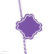 Andaz Press Fancy Square Gift Tags, Solid, Blank, Purple, 24-Pack