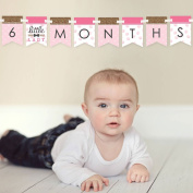 Darling Little Lady - 12 Month By Month Photo Banner for Baby's First Year - Monthly Photo Prop