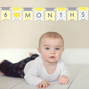 Chevron Yellow - 12 Month By Month Photo Banner for Baby's First Year - Monthly Photo Prop