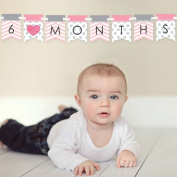 Chevron Pink - 12 Month By Month Photo Banner for Baby's First Year - Monthly Photo Prop