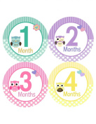 Sweet Owls Baby Monthly Bodysuit Stickers 1-12 Months