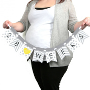 Chevron Grey - Week by Week Pregnancy Banner - Maternity Weekly Photo Prop