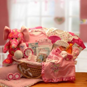 Baby Girl Gift Baby Blossoms Deluxe Baby Pink Baby Moses Carrier Gift Basket