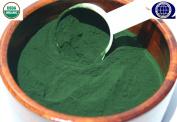 Organic Cracked Cell Chlorella Powder ~Chlorella Pyrenoidosa 240ml -