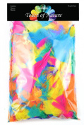 Touch of Nature Feather Value Pack Neon Mix for Arts and Craft, 28gm