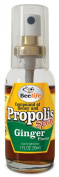 Spray Propolis with Honey and Ginger Spray - 1 FL Oz