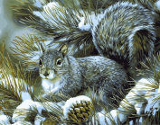 DIY Paint By Number Kits Canvas Painting - Squirrel