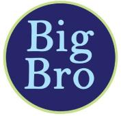 Mumsy Goose Big Brother Sticker