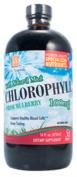 Chlorophyll 100mg w/Spearmint 470mls