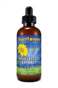 Wild Lettuce Herb, Pure Premium Wild Lettuce Herb Extract, 60ml
