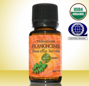Frankincense Essential Oil ★ Certified Organic 100% Pure Natural Undiluted Premium Grade Essential Oils ★ One of the Oldest Medicines Known to Man Used in Sacred Aromatherapy, Massage, Relaxation ★ Uplifting Mood & Heightening Your Awareness★ H ..
