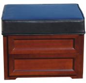 Blackstone International Leather Media Storage Ottoman, African Teak and Solid Hardwood Veneers