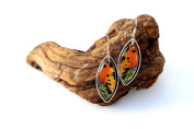 Real Butterfly Wing Earrings in Sterling Silver - Sunset Moth Rainbow
