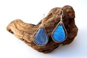 Real Butterfly Wing Earrings in Sterling Silver - Blue Morpho