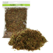 2 Pack Floral Moss 67 Cubic Inches/1.1 Litre