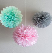 CheckMineOut 12pcs Mixed Grey Pink Mint Tissue Paper Pom Poms Flower Wedding Centrepieces Birthday Party Baby Room Nursery Decoration