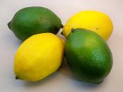 2 Best Artificial Lemons & 2 Best Artificial Limes Decorative Fruit
