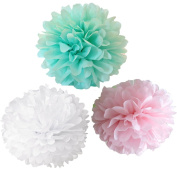 CheckMineOut 12pcs Mixed White Pink Mint Tissue Paper Pom Poms Flower Wedding Centrepieces Birthday Party Room Decoration Hanging Decor