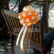 Peach Wedding Pull Bows with Tulle Tails - 20cm Wide, Set of 6