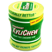 XyliChew Chewing Gum - Sugar Free Spearmint - 60 Piece Jar - Case of 4