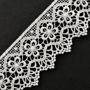 White Vintage Cluny Lace Trim, 5.4cm by 1 Yard, STEP-3819