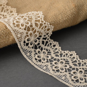 Ivory Vintage Cluny Lace Trim, 5.4cm by 1 Yard, STEP-3819