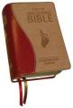 New Catholic Bible