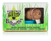 NPW Gift Grow Your Own Hairy Beaver Kit