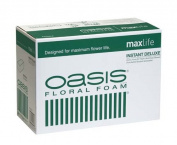 Oasis Instant Deluxe Floral Foam Bricks - Case of 48 - Maxlife Floral Foam - Wet Floral Foam Bricks for Flower Arranging