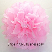 (15pcs) Pink White Mixed Size Tissue Paper Pom Poms Lanterns Decorations