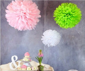 Worldoor® 12pcs Mixed 3 Sizes White Pink Tissue Paper Pom Poms Flower Wedding Party Baby Girl Room Nursery Decoration, Tissue Paper Pom Poms Paper Flowers Ball New Year Decorations And Birthday Decoration For Parties