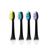 iBrush Professional Sonic Toothbrush Heads