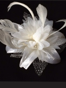 Ladies Beautiful Pastel Coloured Feather and Flower Fascinator On A Clear Comb