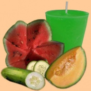 Cucumber Melon Premium Fragrance Oil, 470ml Bottle