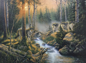 Wolves By Stream in Woods
