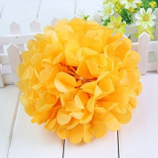 Worldoor® New Coming 12PCS Mixed Sizes Light Orange Party Tissue Paper Flower Pom Poms Pompoms Wedding Birthday Bridal Shower Party Favour Decoration