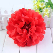 Worldoor® New Coming 12PCS Mixed Sizes Red Party Tissue Paper Flower Pom Poms Pompoms Wedding Birthday Bridal Shower Party Favour Decoration