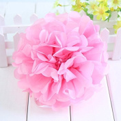 Worldoor® New Coming 12PCS Mixed Sizes Light pink Party Tissue Paper Flower Pom Poms Pompoms Wedding Birthday Bridal Shower Party Favour Decoration