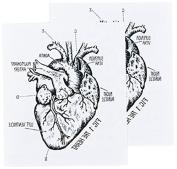 Tattly Temporary Tattoos, Heart Chart, 5ml
