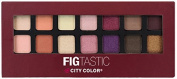 City Colour FIG Tastic Eyeshadow Book