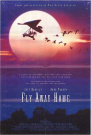 FLY AWAY HOME (ONE TIME) [DVD_Movies] [Region 4]